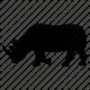 Rhino silhouette Kruger National Park safari