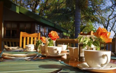 Breakfast at Chestnut Country Lodge