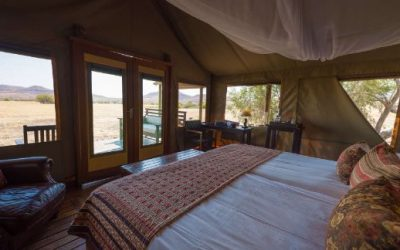 Desert Rhino Camp room