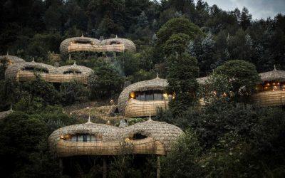 Bisate Camp in Rwanda