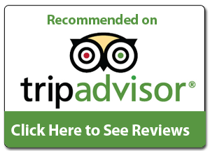 TripAdvisor Moriti Safaris Reviews